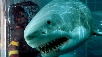 Bait - Haie im Supermarkt - Spielfilm