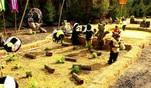 Wild im Wald: Highlights aus Folge 1