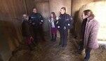 Die Wache Hamburg: Ärger auf dem Ponyhof