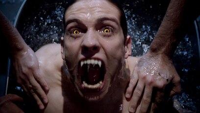 """Trailer Staffel 3: Du willst wissen, was in Staffel 3 von """"Teen Wolf"""" passiert? Dann klick dich jetzt in..."""