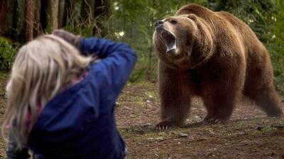 Grizzly Maze - Die Todeszone -